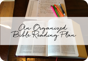 an organized Bible reading plan